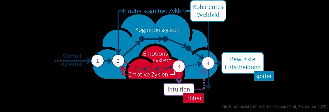 Was zur Entdeckung der rein emotiven Zyklen führte