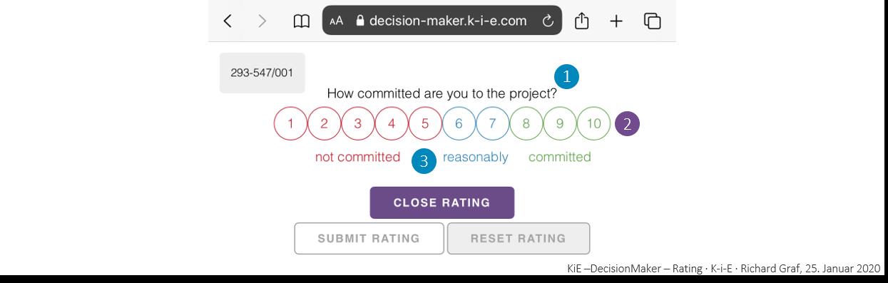 KiE-DecisionMaker Rating