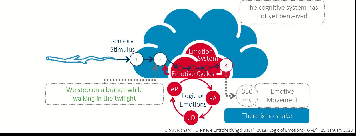 Logic of emotions