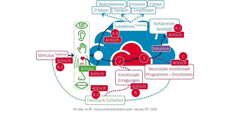 KiE: Der Teufelskreislauf und der Lösungszyklus